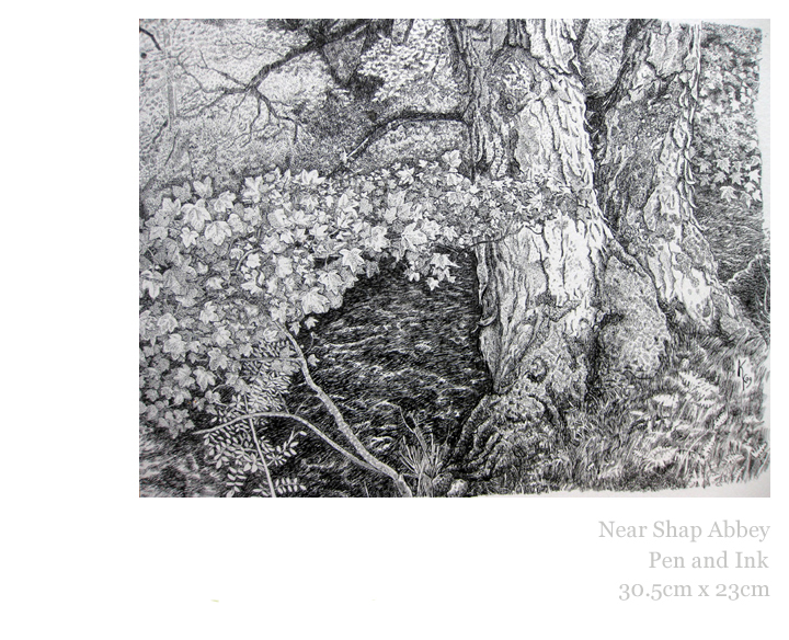 Near Shap Abbey, Pen and Ink